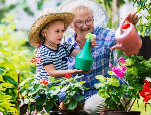 Nonni… spazio ai vostri hobby!