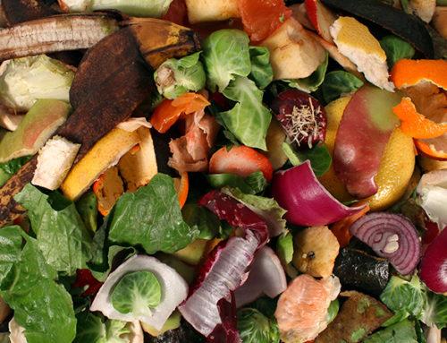 Il dissipatore alimentare contro i germi e i batteri!
