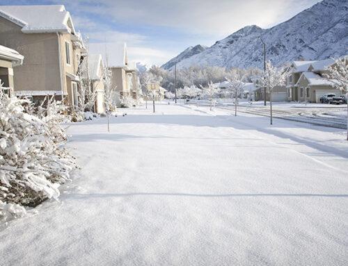 Il dissipatore alimentare: perfetto …in caso di neve!